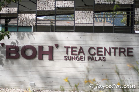 boh_tea_centre.jpg