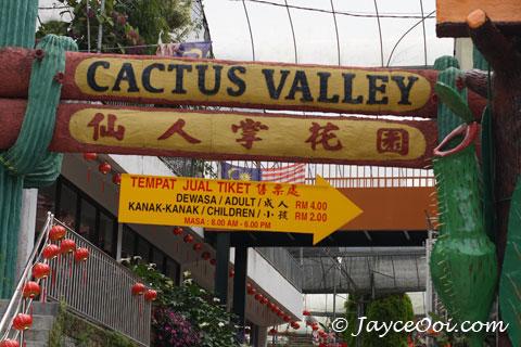 cactus_valley.jpg