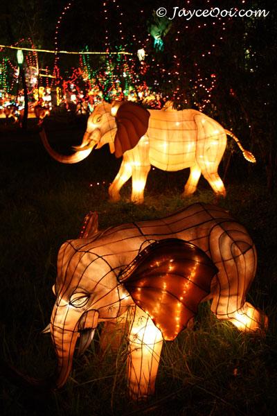 lantern_festival_11.jpg
