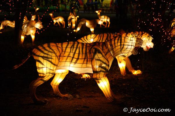 lantern_festi