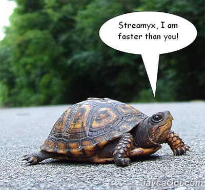 Streamyx Turtle